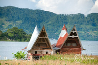 Batak traditional houses in Samosir