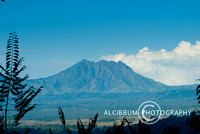 Baluran National Park, East Java, Indonesia