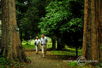 Tourist Activities in Bogor Botanic garden, West Java, Indonesia