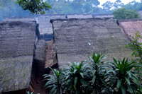 Thatched roof of Baduy people houses