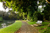 A footpath and a bench in beautiful morning, Bogor Botanical Garden, Indonesia