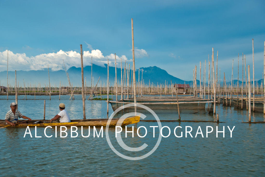 The Fish Cultivation in Floating Net At Limboto Lake, Sulawesi,