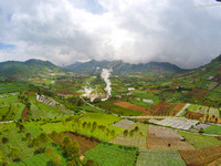 Green plantation and geothermal activity