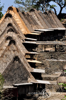 BENA, BAJAWA TRADITIONAL VILLAGE, FLORES